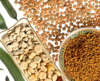 photo, variety of dried legumes